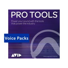 Avid Pro Tools Perpetual Voice Pack - 384 Voice